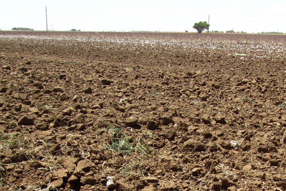 File - This May 19, 2011 file photo shows clumps of dirt in a drought-hardened field near Lubbock, Texas. The U.S. Department of Agriculture has dubbed all of Texas a natural disaster as the worst drought in decades persists across most of the state. Photo: Betsy Blaney/AP / AP2011