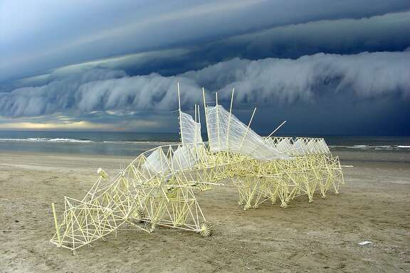 """One of Theo Jansen's�Strandbeests,�""""Animaris Percipiere"""" (2005), on view at the Exploratorium May 27-Sept. 5."""