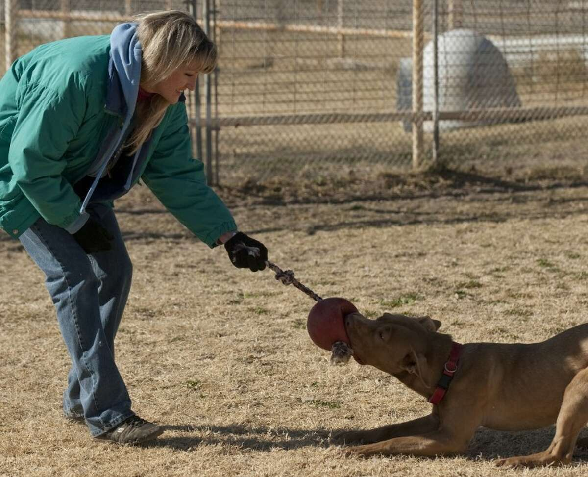 (File Photo) Future expansion of Lone Star Animal Sanctuary received a path forward at the Planning and Zoning Commission meeting Monday.