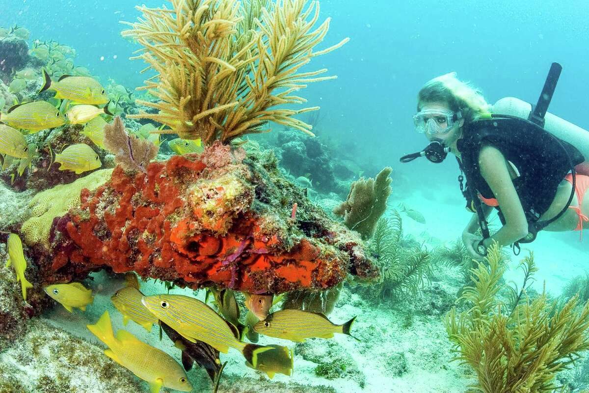 Key Largo boasts world-class SCUBA diving and snorkeling at the worldÂ?'s third-largest coral reef in the National Marine Sanctuary, at coral reefs in the adjacent John Pennekamp State Park, and other sites including the underwater Christ statue.