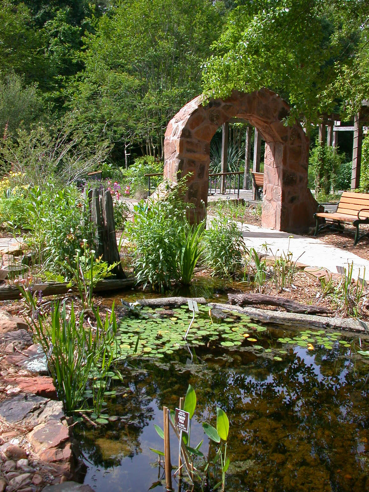 The endangered species garden at Mercer Arboretum and Botanic Gardens in Houston features 18 rare native species planted with common natives. The display covers about one-half acre on the 25 acres developed at the gardens.