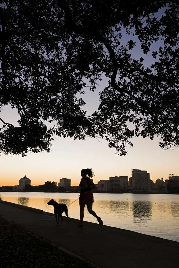 22. (tie) OaklandMilwaukee2015 dog attacks: 232014 dog attacks: 22/11 Photo: Getty Images/Lonely Planet Images