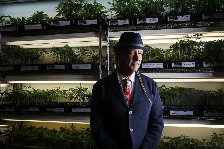 "Steve DeAngelo, chief executive officer at Oakland's Harborside dispensary, says the coalition supporting the Teamsters is ""an unholy alliance"" of special interests clamoring for a cut of profits. Photo: Leah Millis, The Chronicle"