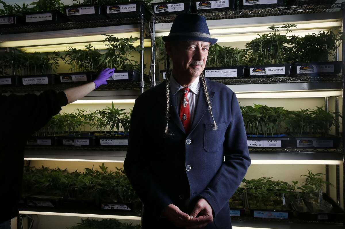 Steve DeAngelo pictured at Harborside Health Center medical cannabis dispensary May 12, 2016 in Oakland, Calif.