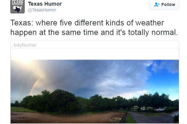 Photo: @TexasHumorTwitter