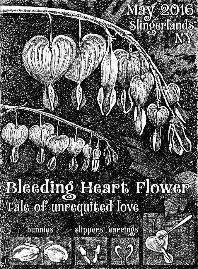 Folkloric legends were once used to explain the unique features of flora. Bleeding hearts are associated with tragic stories of unrequited love, told centuries ago, often while delicately peeling apart one of the plant's red-pink-white heart-shaped flowers, using each piece as a prop. (Carol Coogan)