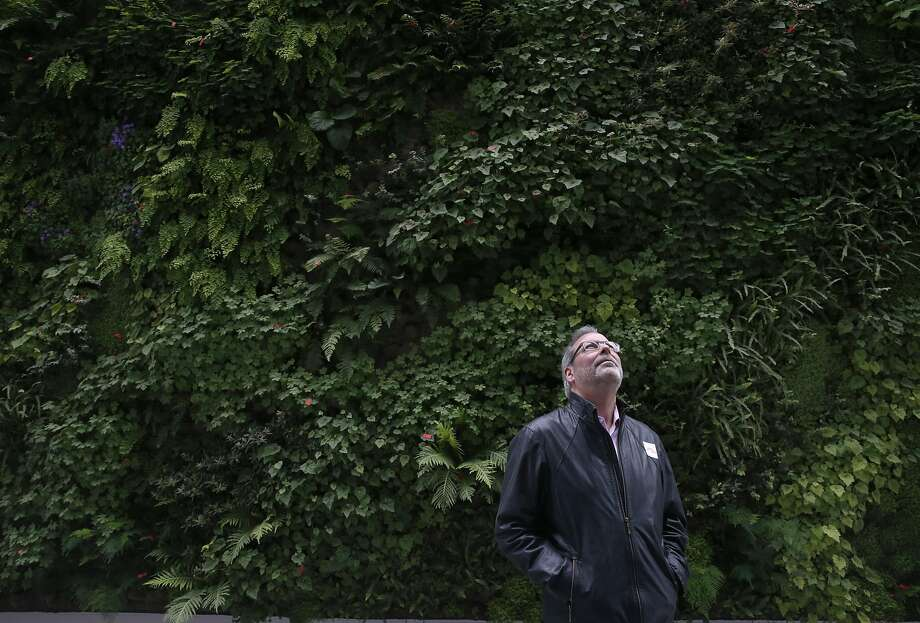 David Arrick views the architecture of the new SFMOMA in front of the Living Wall in San Francisco, Calif. on Saturday, May 14, 2016. The museum opened its doors to the public following a three-year expansion project which nearly triples the gallery space. Photo: Paul Chinn, The Chronicle