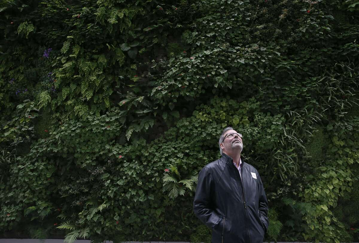 David Arrick views the architecture of the new SFMOMA in front of the Living Wall in San Francisco, Calif. on Saturday, May 14, 2016. The museum opened its doors to the public following a three-year expansion project which nearly triples the gallery space.