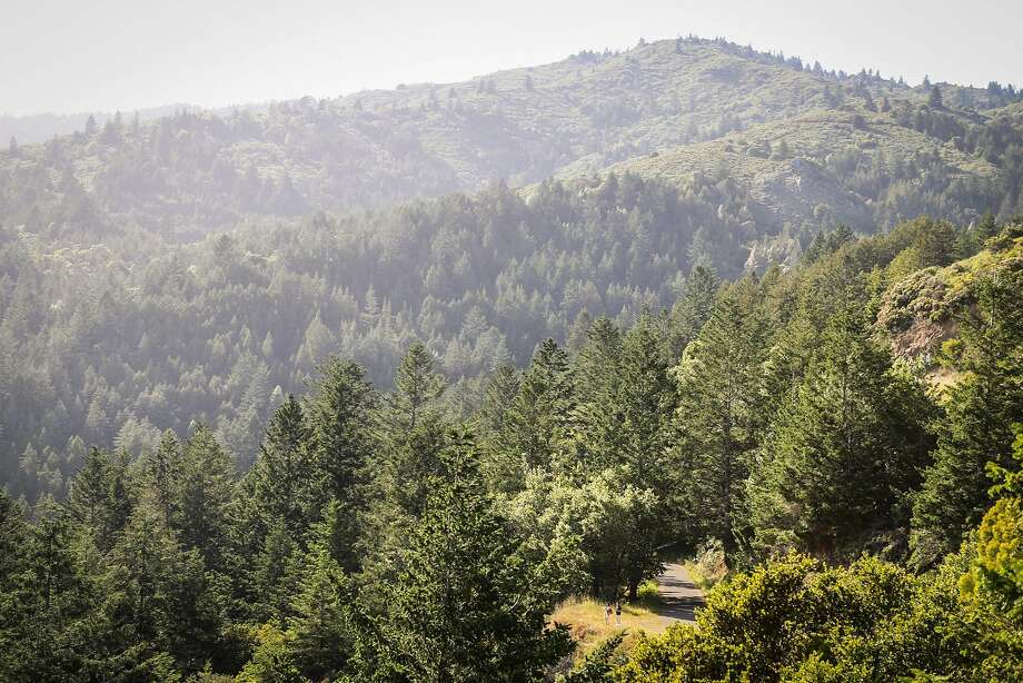 Spectacular views abound on all sides of Mountain Home Inn on Mount Tamalpais. Photo: Gabrielle Lurie, Special To The Chronicle