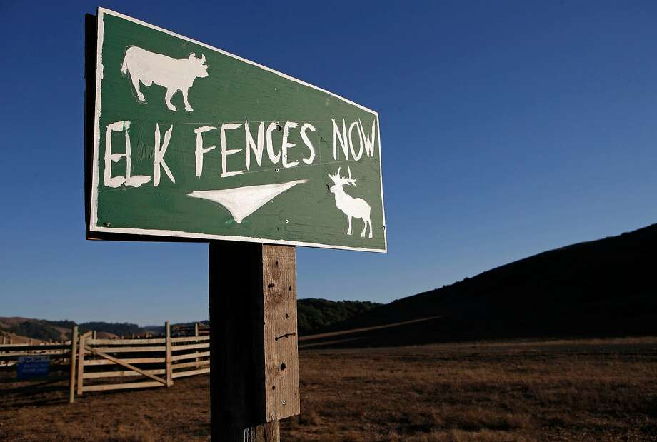 A sign displays an opinion near the Point Reyes National Seashore, Calif., on Thursday Oct. 2, 2014. Ranchers are complaining about the tule elk along the Point Reyes National Seashore, because they have begun roaming onto their grazing lands, knocking down fences and foraging where their cattle forage. The ranchers want the elk removed and fenced off, but conservationists think they should roam free. Photo: Michael Macor, The Chronicle