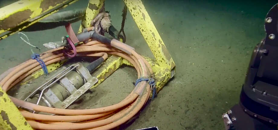 An octopus plays tug of war with the robotic arm of the Exploration Vehicle Nautilus as the arm attempts to untie a piece of the research crew's gear from the Pacific Ocean floor in May 2016. Photo: Exploration Vehicle Nautilus | Ocean Exploration Trust