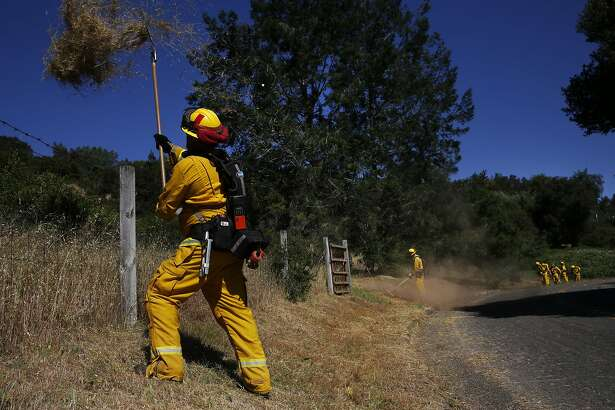 Cal Fire Engineer Trevor Galeazzi shovels cleared dead grass over a fence while working on fuel reduction and making a fire break with other fire fighters to protect the Bennett Ridge community up the hill from them as a precaution to prepare for fire season May 17, 2016 outside of Santa Rosa, Calif.