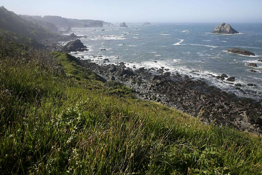 The Northern California coast at Scotty Point in Humboldt County. Photo: Connor Radnovich, The Chronicle