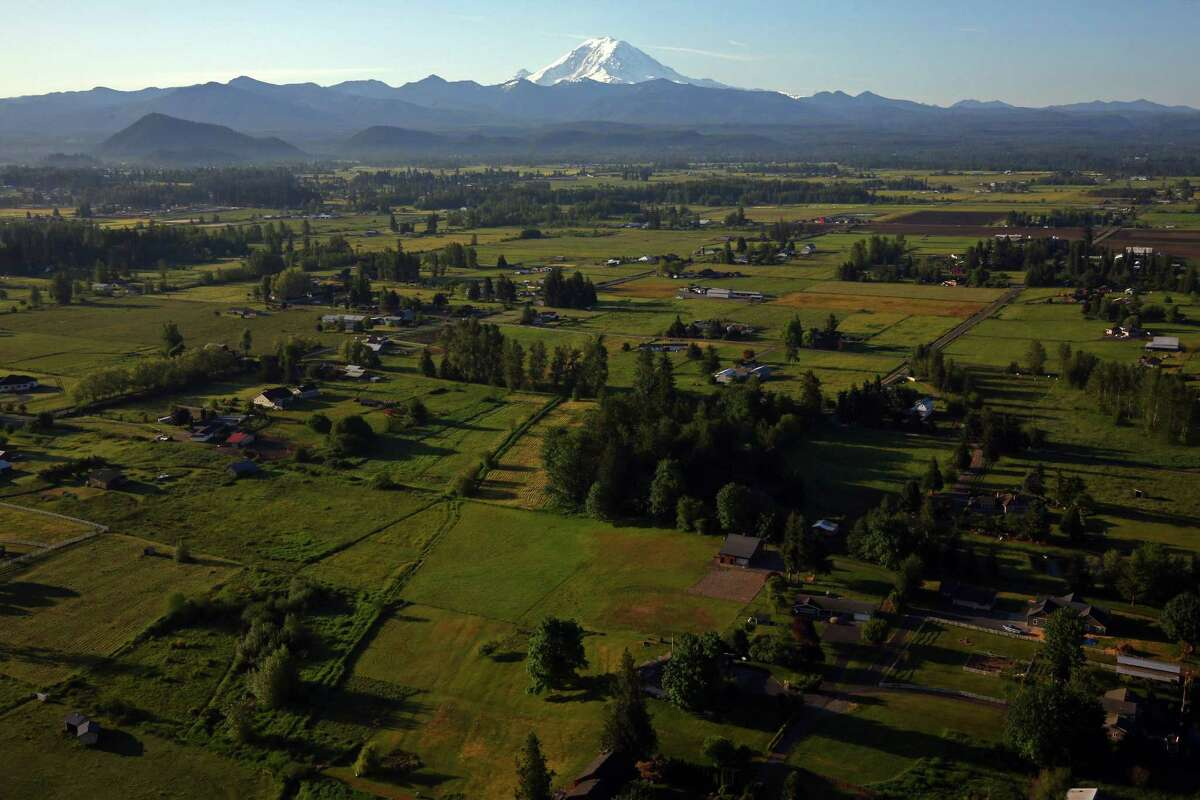 Enumclaw School Districtplans to begin the yearremotely after deciding it would not be safe to return to in-person teaching.