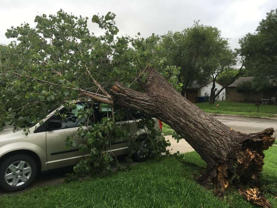 Reader Kenny Dickhute sent in this photo of a tree that fell on his vehicle during a storm that swept through San Antonio May 17, 2016. Photo: Courtesy Of Kenny Dickhute