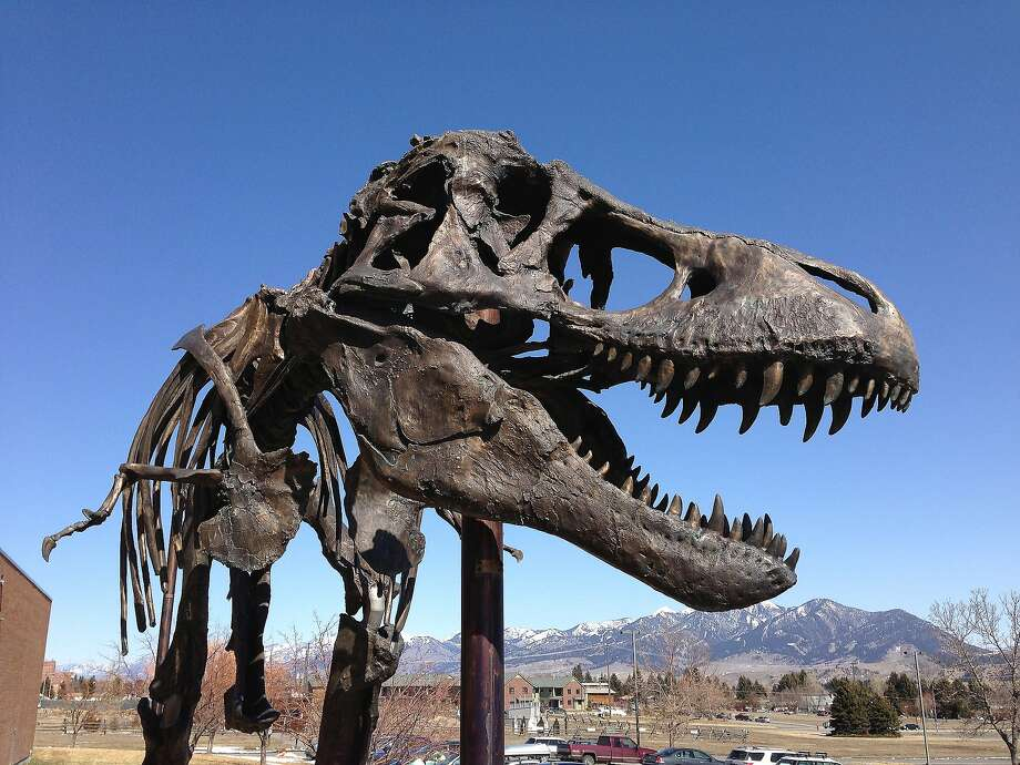 Today the world learned that T-Rex probably had lips. We know T-Rex wasn't mythical, but with this new theory, the beast might as well be a part of the mythical creatures that haunt the U.S. listed in this gallery.. Photo:  Kirk Johnson