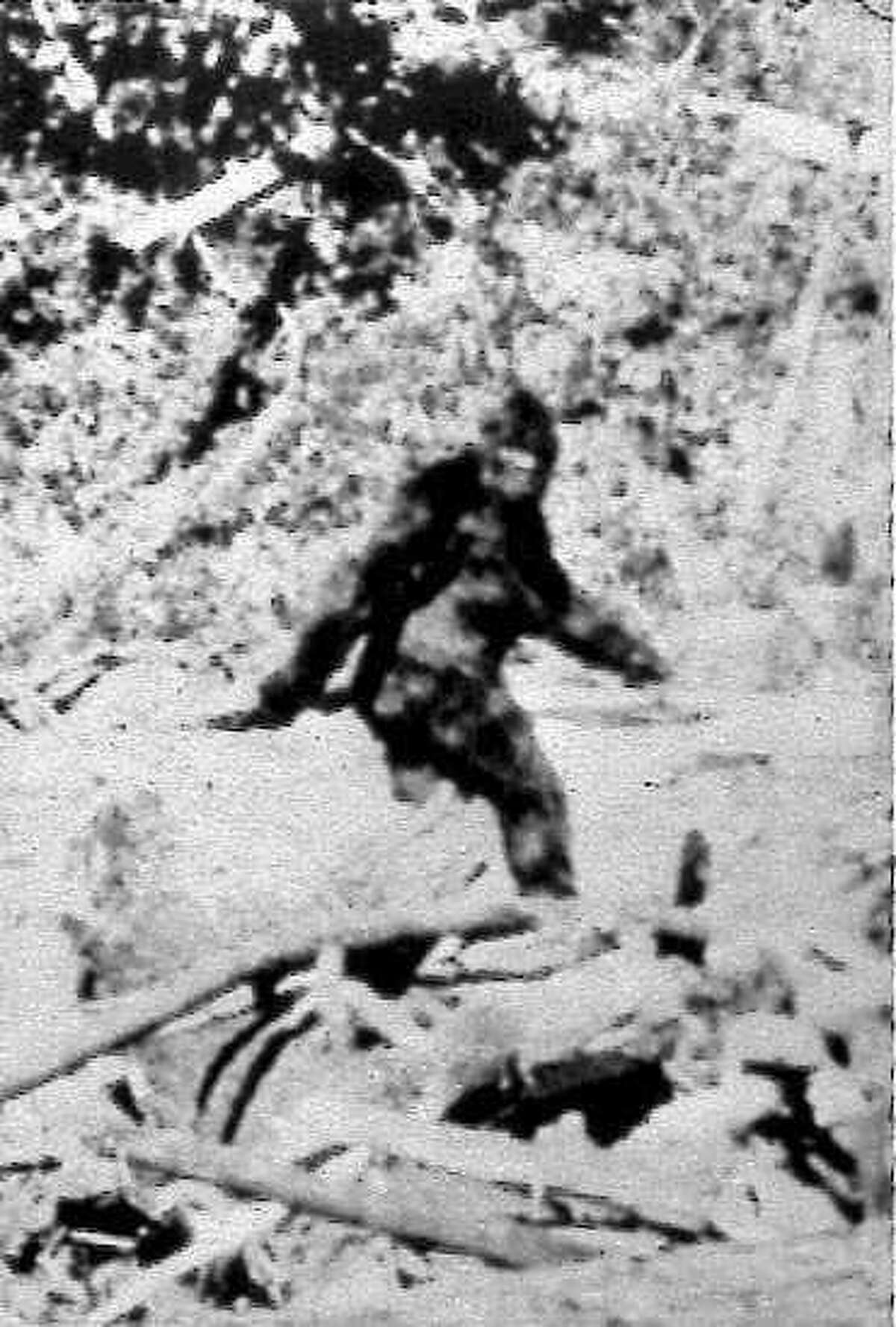 FILE--Photographers Roger Patterson and Bob Gimlin made this image Oct. 20, 1967, purportedly showing a female Bigfoot, during a horseback search in northern California for Sasquatch or 'Bigfoot'. Now, four magnified frames of the 16 mm footage show tracings of a bell-shaped fastener at Bigfoot's waist and after decades of doubt, some enthusiasts say the creature in the so-called Patterson-Gimlin Film can finally be dismissed as a man in a monkey suit. (AP Photo/File)