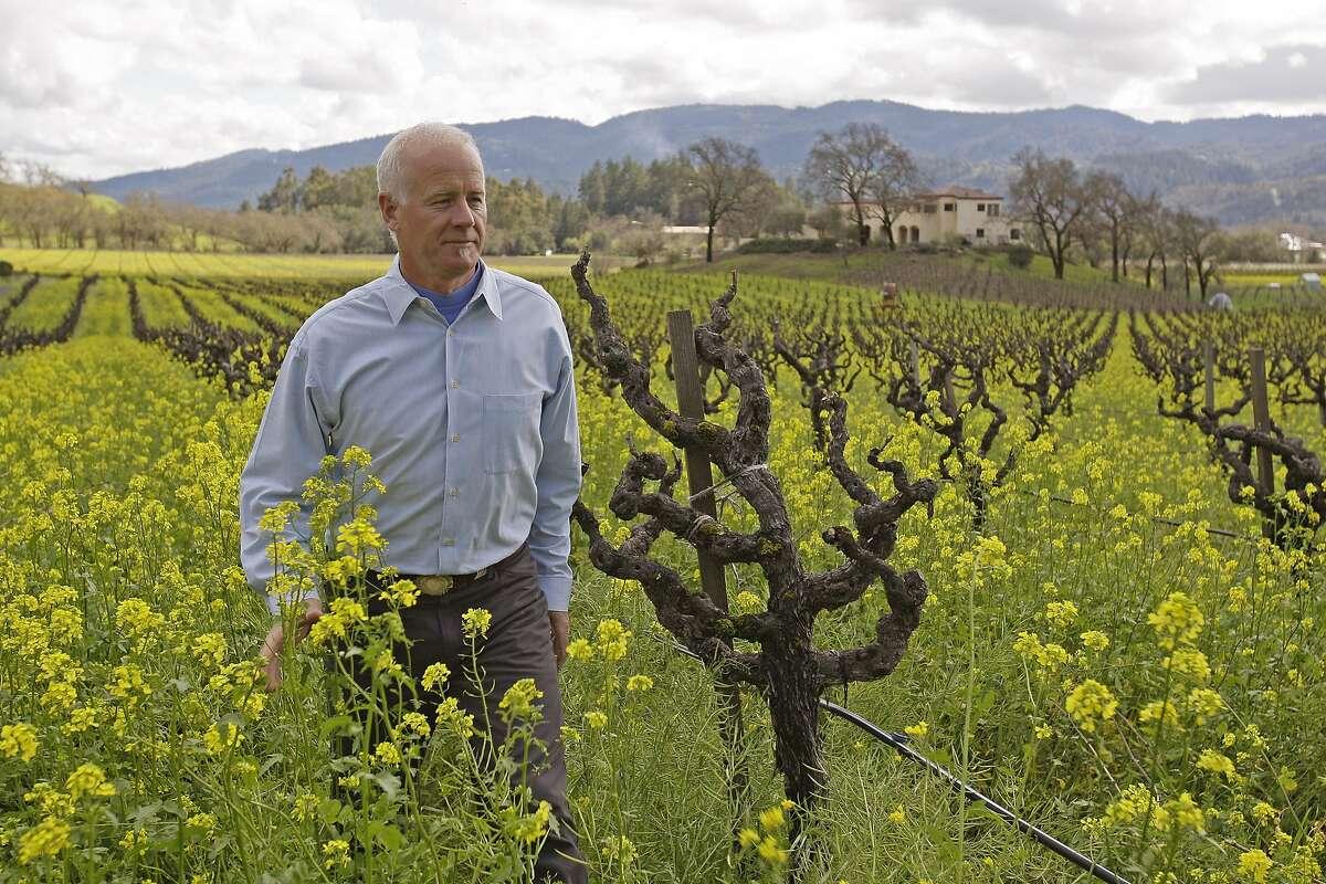 Bo Barrett in vineyard