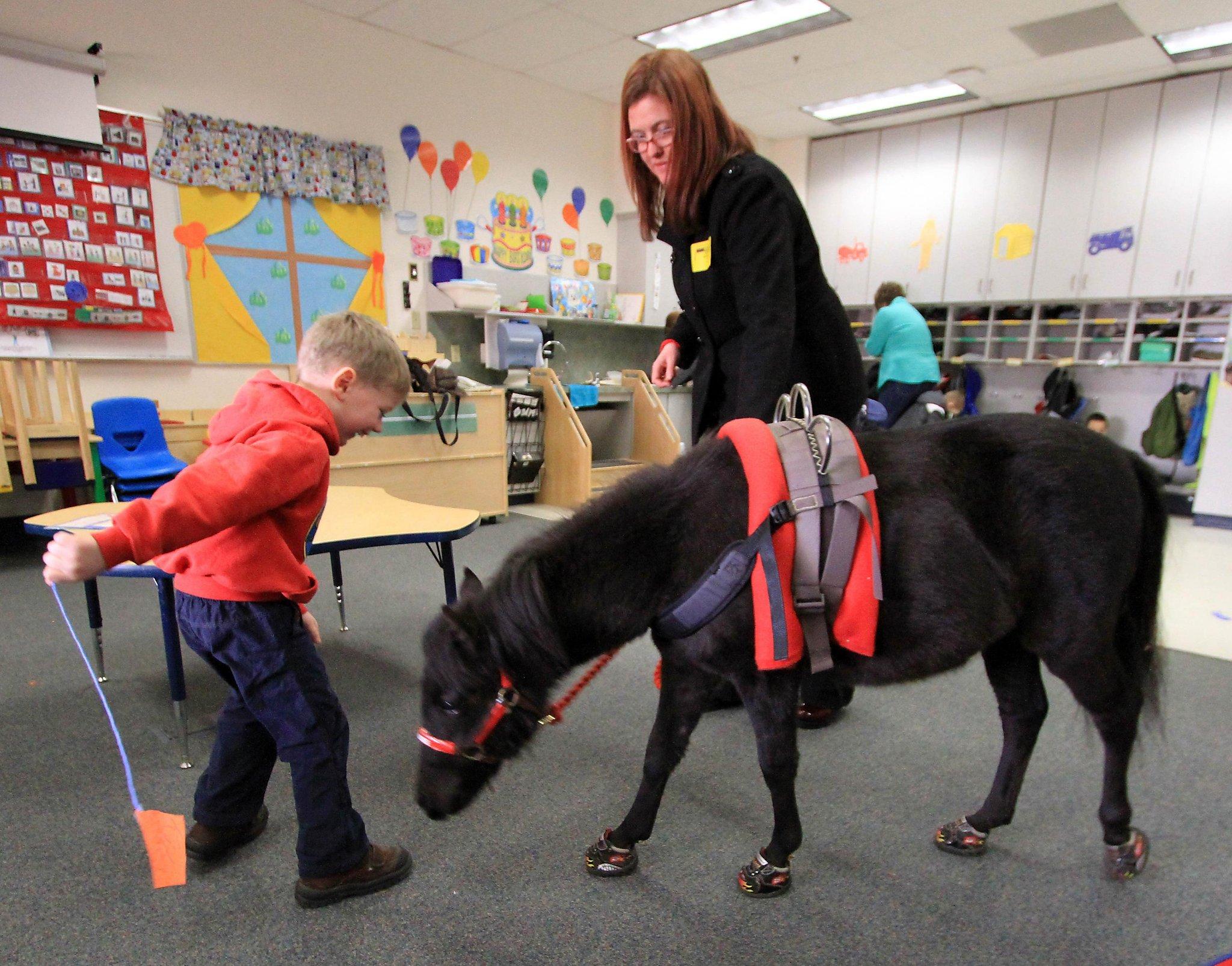 Service Horse Alaska Build A Bear