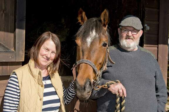 """With Dream Alliance, Janet and Brian Vokes are not your typical racehorse owners in """"Dark Horse."""""""