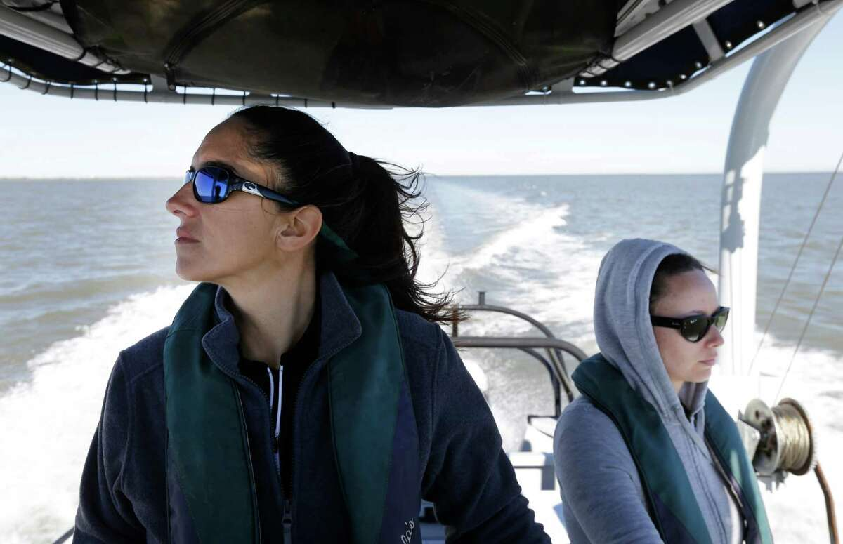 Kristi Fazioli, left, and Sherah Loe, both with the Environmental Institute of Houston at the University of Houston-Clear Lake, spend hours searching for dolphins in Galveston Bay in February.