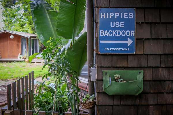 "A sign for hippies to use the backdoor is mounted outside Wavy Gravy's home in Berkeley. Hugh ""Wavy Gravy"" Romney has turned 80 and was honored at a birthday concert fundraiser for the Seva Foundation Sunday, May 22, 2016 at the event center at Sonoma Mountain Village in Ronhert Park, Calif.  Brian Feulner, Special to the Chronicle"