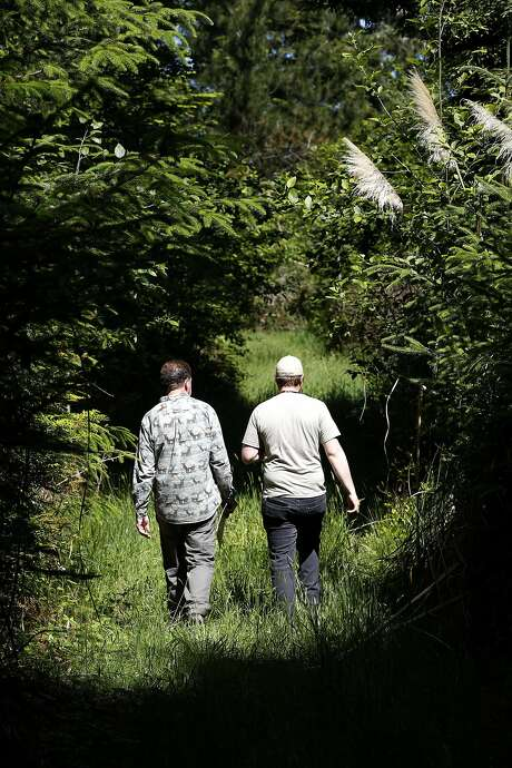 David Myers (left), executive director of the Wildlands Conservancy, and Alex Blessing, Eel River Estuary Preserve ranger, walk through a woods at Scotty Point in Humboldt County. Photo: Connor Radnovich, The Chronicle