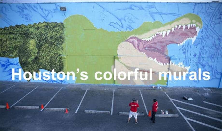 Ascend austin 39 s one of a kind castle hill graffiti park for Austin mural tour