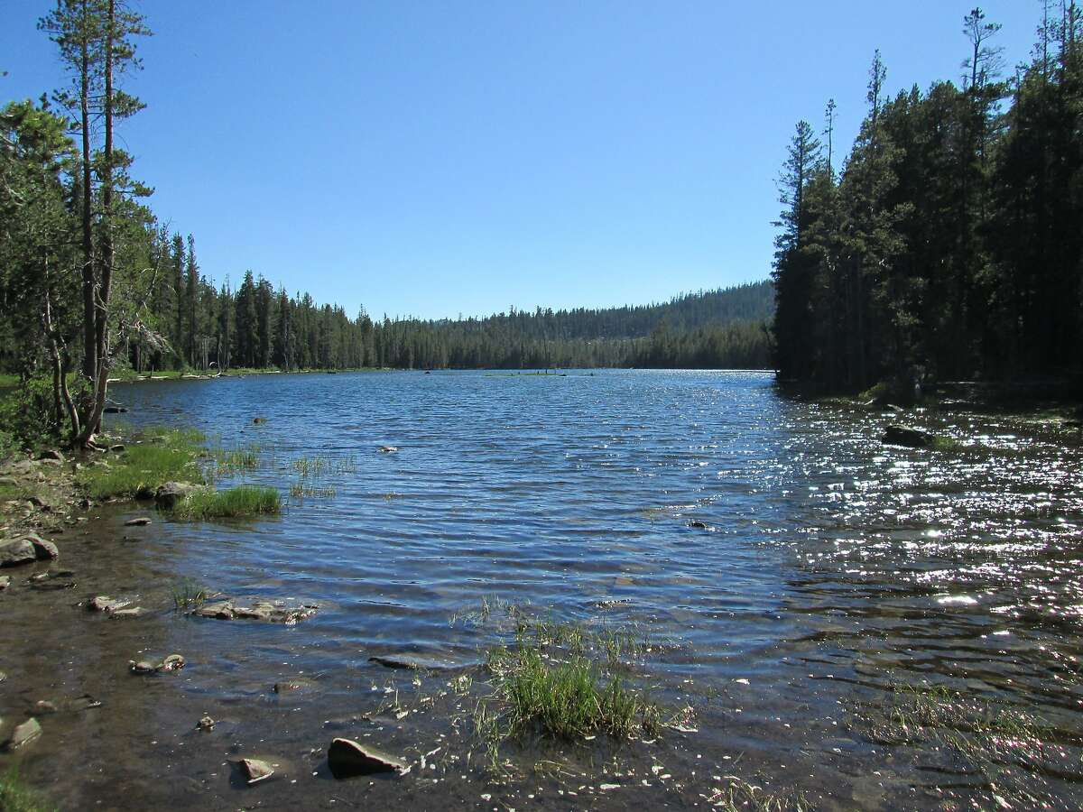 Haven Lake - The Forest Service opened the campground last week at Haven Lake located in the Lakes Basin Recreation Area.