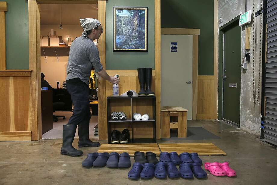 Sequoia Sake partner Jake Myrick at the Bayview brewery's entrance, where guests are required to change into indoor shoes. Photo: Liz Hafalia, The Chronicle