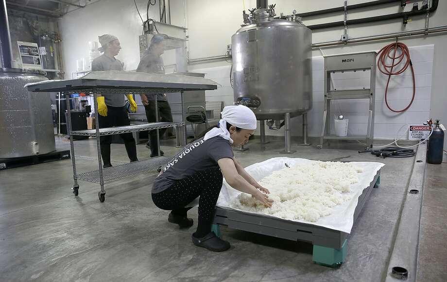 Sequoia Sake partner Noriko Kamei works with steamed rice. Photo: Liz Hafalia, The Chronicle
