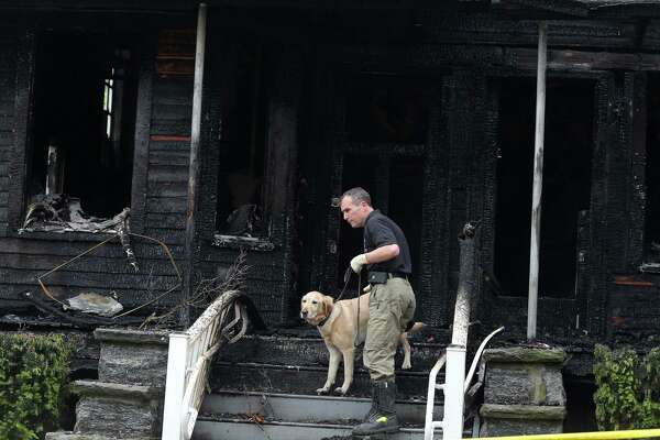 Klaus, an accelerant detection dog, searches the three-story house at 589 Bedford Street in Stamford, Conn. after a fire on Tuesday morning, May 24, 2016 destroyed the building. Investigators say the fire started suspiciously and are investigating for proof of arson.