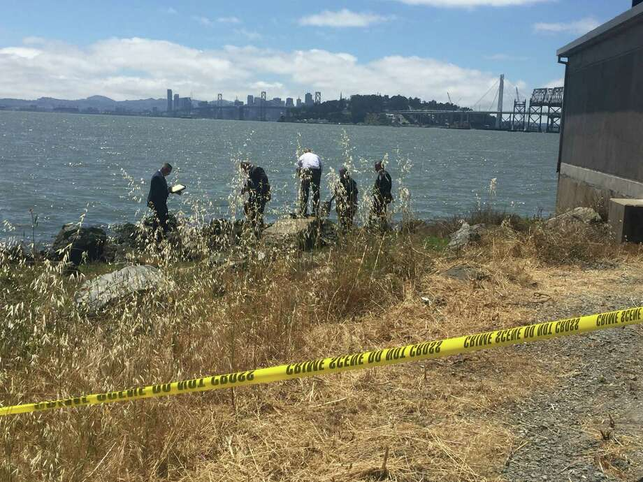 Oakland Police detective search the area near the eastern end of the Bay Bridge where the torso of a young male was discovered Wednesday. Photo: Jenna Lyons / The Chronicle / /