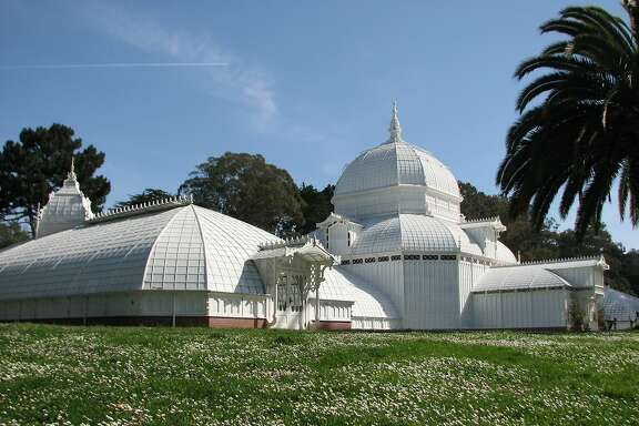 The Conservatory of Flowers is the most fun building in Golden Gate Park!