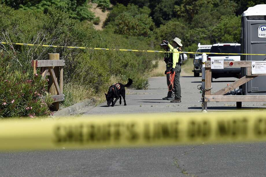 Volunteers with the Marin County Sheriff's Search and Rescue Team search the trail on the Indian Valley Preserve which is the scene of a double shooting involving students from Novato High School in Novato, Calif., Thursday, May 26, 2016. A San Rafael man was taken into police custody on Monday for his alleged involvement in the shooting. Photo: Michael Short, Special To The Chronicle