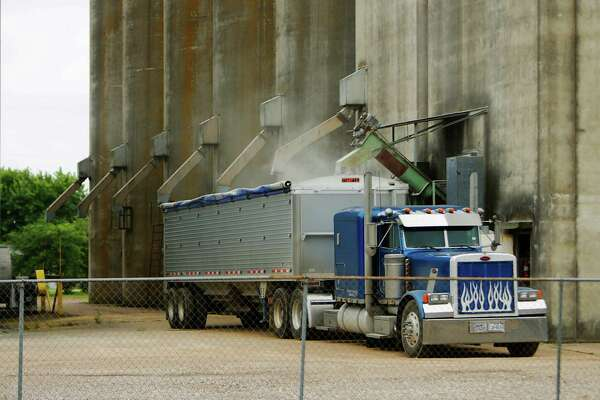 Rice is loaded into a truck to be taken to Beaumont to be milled at the Brookshire Drying Co., Wednesday, May 18, 2016, in Brookshire. ( Mark Mulligan / Houston Chronicle )