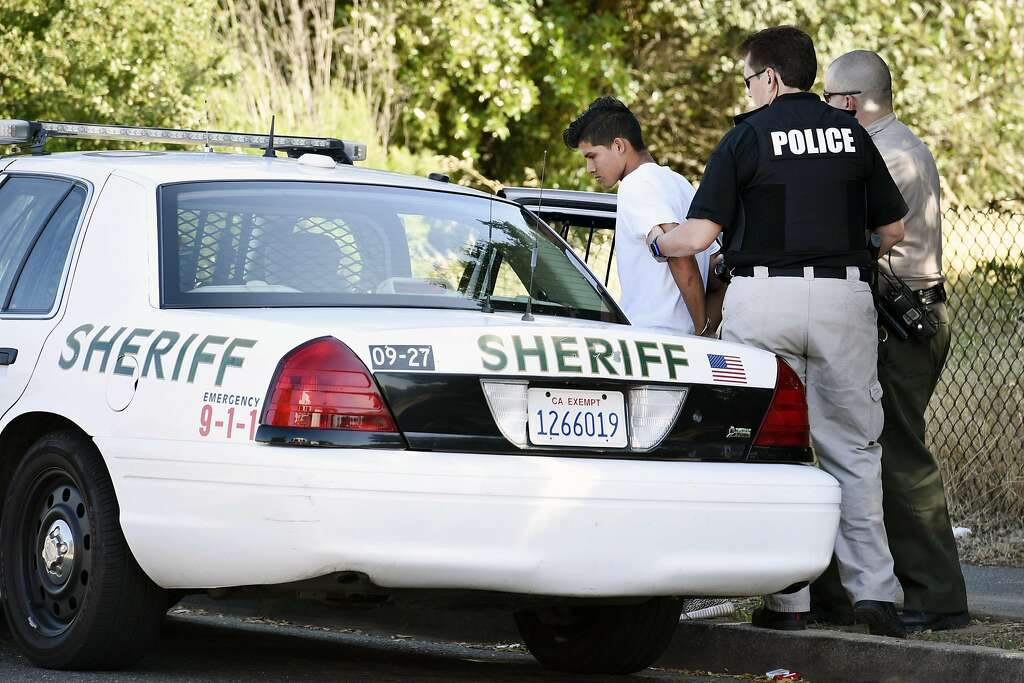 2 teens taken into custody in killing of Novato student - SFGate
