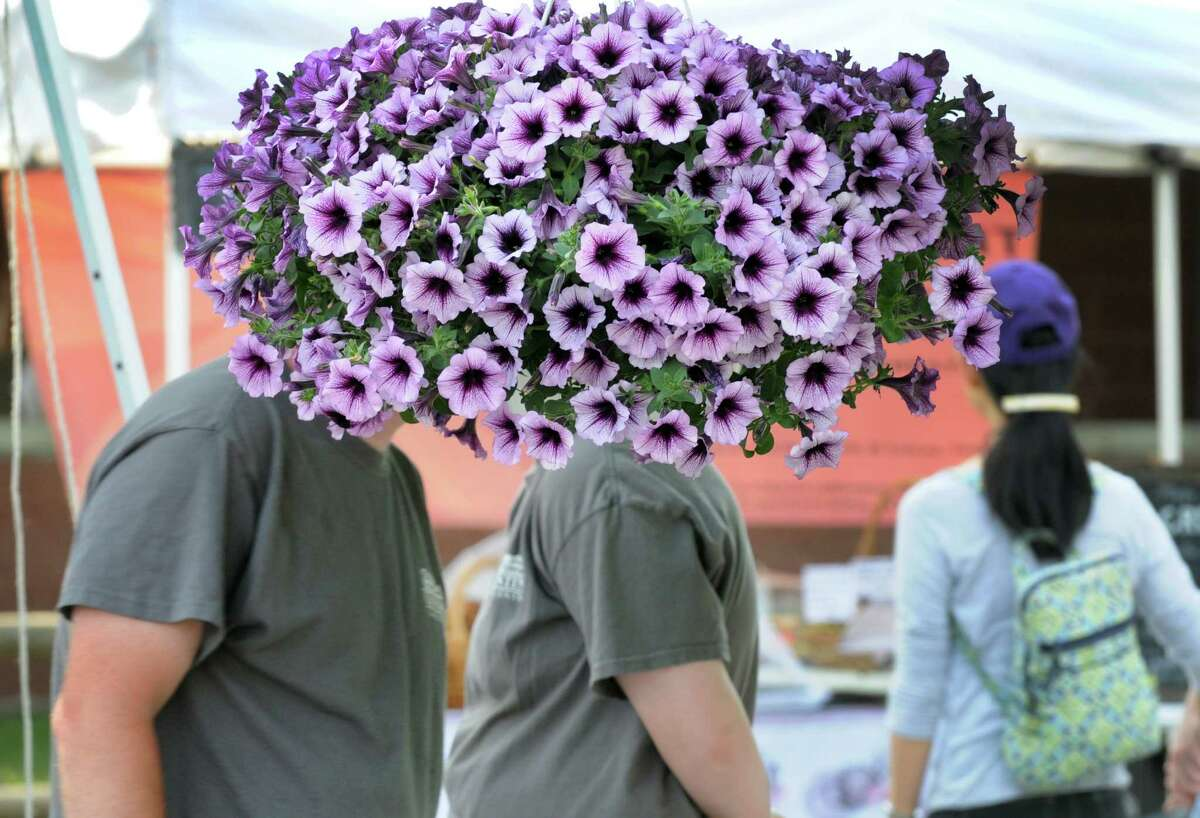 The new Cook Park Farmers Market on Thursday May 26, 2016 in Colonie, N.Y. The market is open from May 19-October 13, and takes place on Thursday from 4-7 PM. (Michael P. Farrell/Times Union)