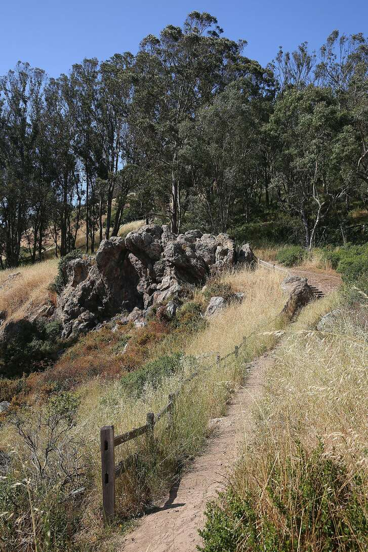 Coyote  Crags trail at Glen Canyon park on Wednesday, May 25, 2016 in San Francisco, Calif.