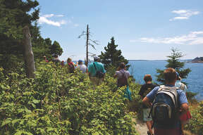 Family Nature Camp at College of the Atlantic in Bar Harbor, Maine