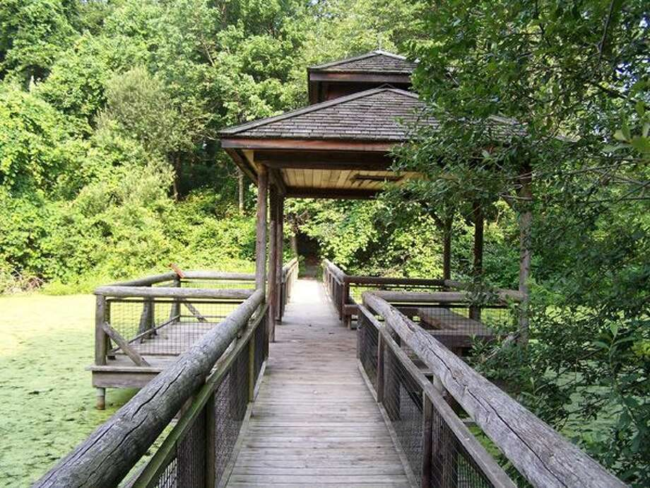 The Larsen Sanctuary at the Audubon Society's Center at Fairfield, will offer free nature walks on Saturday, June 4, in celebration of Connecticut Trails Weekend, June 4-5 — two of more than 200 events statewide. Photo: Contributed Photo