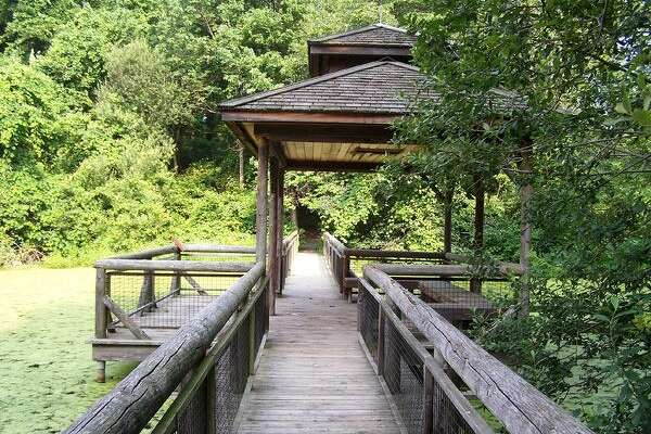 The Larsen Sanctuary at the Audubon Society's Center at Fairfield, will offer free nature walks on Saturday, June 4, in celebration of Connecticut Trails Weekend, June 4-5 — two of more than 200 events statewide.