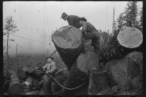 Lumberjacks are pictured in October 1941 at work in Cowlitz County.
