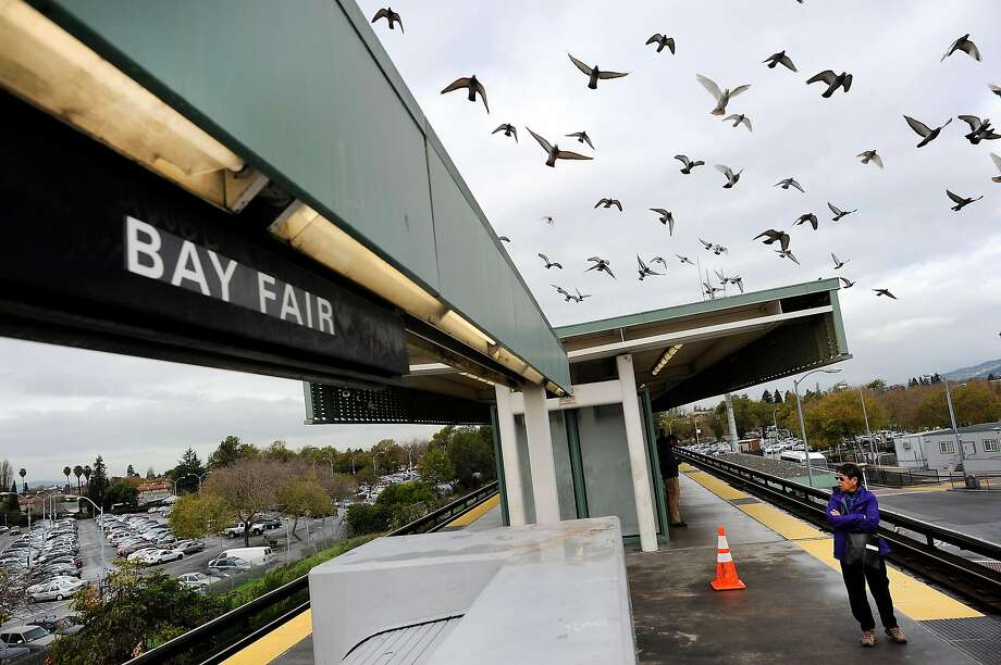 Birds fly above the platform at the Bay Fair BART station in San Leandro, CA, on Thursday, December 18, 2014. Photo: Michael Short, Special To The Chronicle