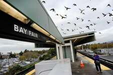 Birds fly above the platform at the Bay Fair BART station in San Leandro, CA, on Thursday, December 18, 2014.