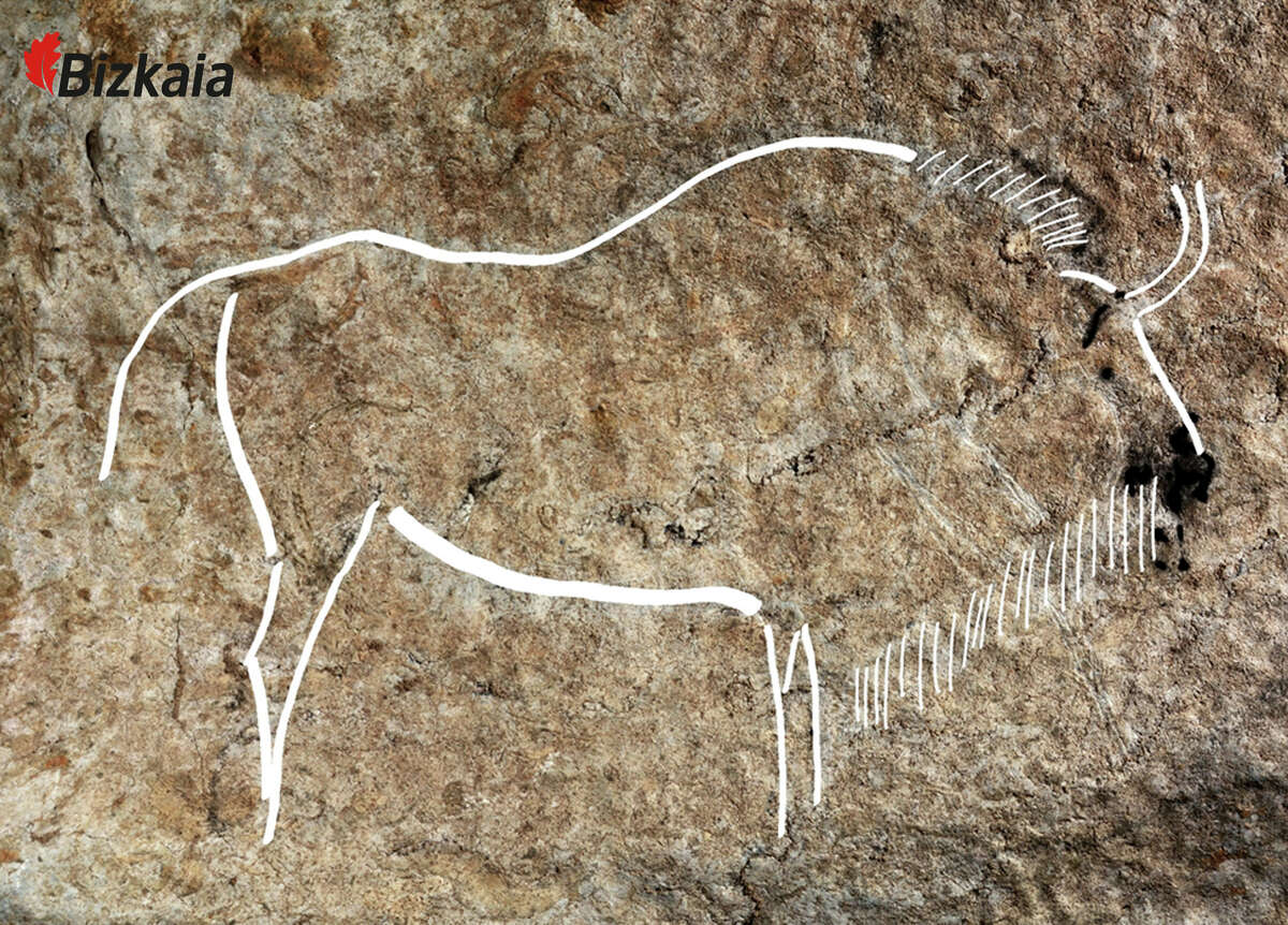 This image released by the Diputacion Floral de Bizkaia on Friday May 27, 2016, shows a cave drawing. Spanish archaeologists say they have discovered an exceptional set of Paleolithic-era cave drawings that could rank among the best in a country that already boasts some of the world's most important cave art. Chief site archaeologist Diego Garate said Friday that an estimated 70 drawings were found on ledges 300 meters (1,000 feet) underground in the Atxurra cave, Berriatua, in the northern Basque region. He described the site as being in