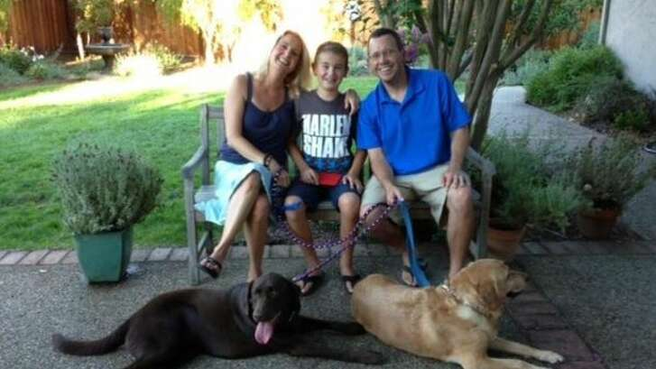 A hit and run driver hit Anne Palmer's labradors, Sadie and Chudley, injuring the so badly they had to be euthanized