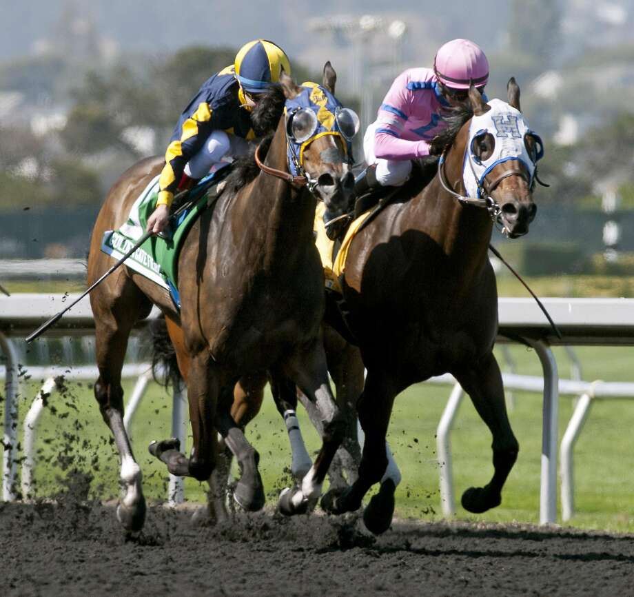 Living the Life, trained by Gary Mandella and ridden by jockey Drayden Van Dyke, won the All American (Grade III) $100,000 Guaranteed at Golden Gate Fields on Monday in a time of 1:37.56. Photo: Shane Micheli, Vassar Photography