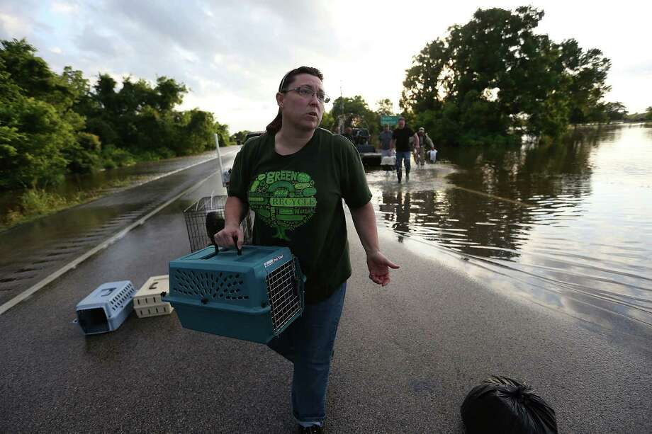 Candace Seger carries a cat crate after officials rescued her 17 cats, dog and husband as the Brazos River flooded into their home  on Monday, May 30, 2016, in Simonton. Photo: Elizabeth Conley, Houston Chronicle / © 2016 Houston Chronicle