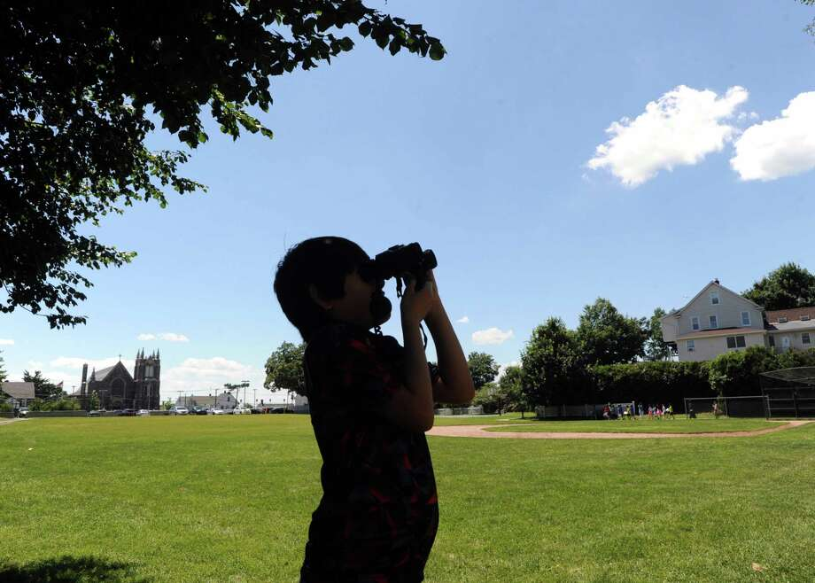 Greenwich summer school is on target to enroll a record number of students this year. Above, a summer school student participates in a 2015 bird-watching activity. Photo: Hearst Connecticut Media File Photo / Greenwich Time